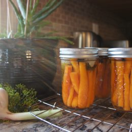 Garlic & Dill Pickled Carrots